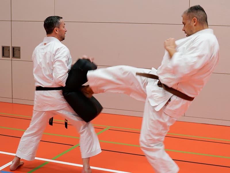 karate-fuer-erwachsene-3